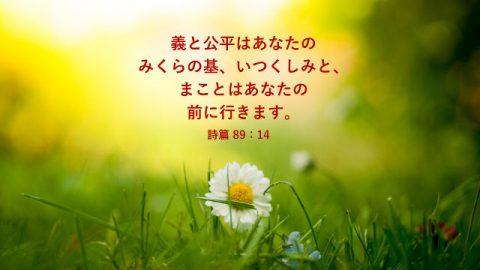 聖書の名言 「慈しみ、信実、聖、憐れみ」について