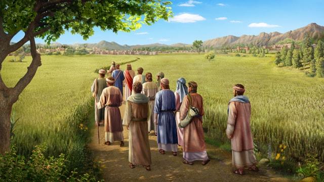 イエス,安息日,麦の穂