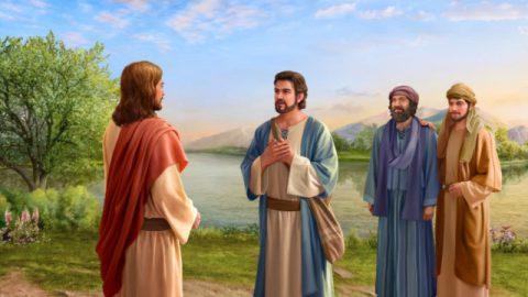 なぜペテロだけが主イエスがキリストだと分かったのか