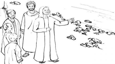 「マタイ福音書」イエスはガリラヤで伝道する