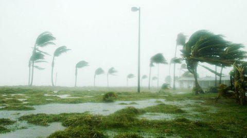 ハリケーンと災難
