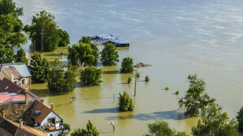 感謝の気持ちに関する記事 | 洪水の中で授かった御救い