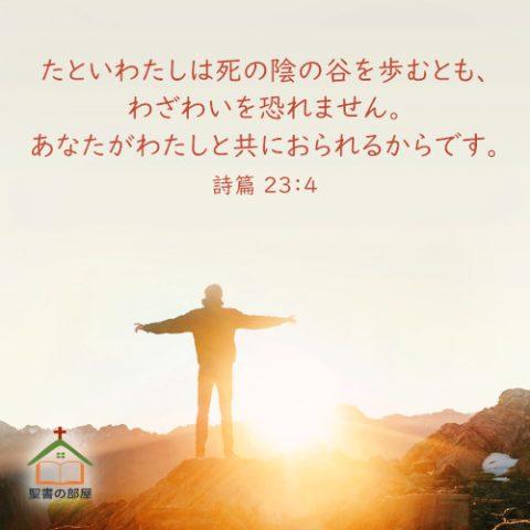 聖書・詩篇23-4