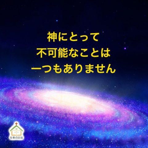 神様は全知全能です