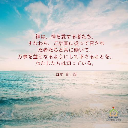 神を愛する,ロマ,聖書