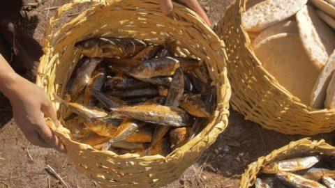 五つのパンと二匹の魚の奇跡は主イエス様のどういった御旨を伝えたのか