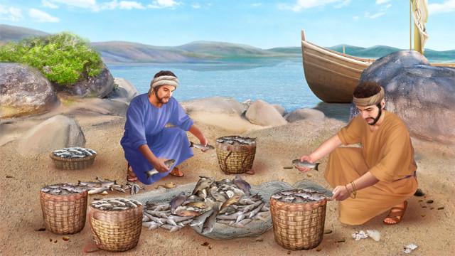 主イエス,たとえ話を語られた,理由,網のたとえ話