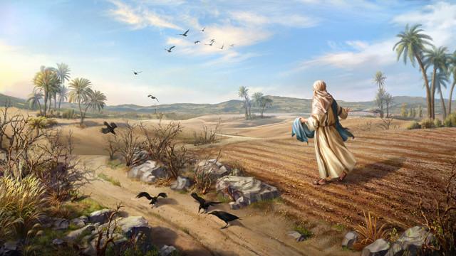 主イエス,たとえ話を語られた,理由,種まきのたとえ