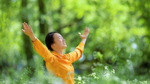 クリスチャン,罪の告白,幸せ