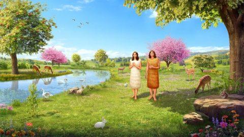 神は動物の毛皮を使ってアダムとエバのために着る物を作られる