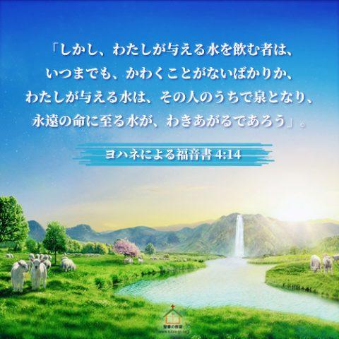 聖句カード,ヨハネによる福音書,永遠の命