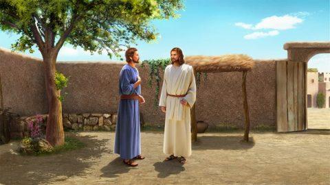 七の七十倍赦すこと 主の愛