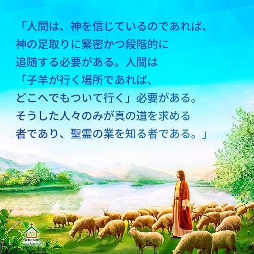 人生の格言-子羊が行く場所であれば、どこへでもついて行く