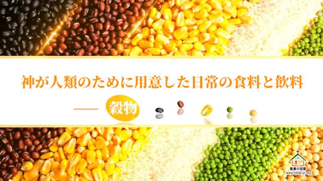 様々な植物性の食料,穀物や果物