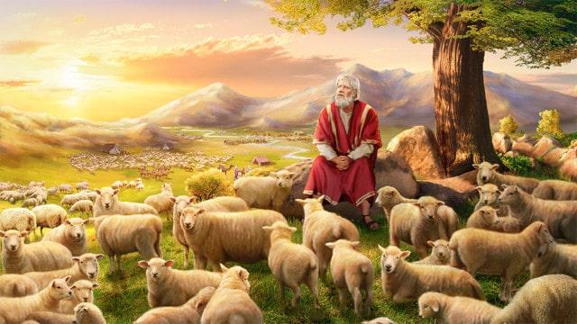ヨブ記感想,発病,苦難,神の御恵み