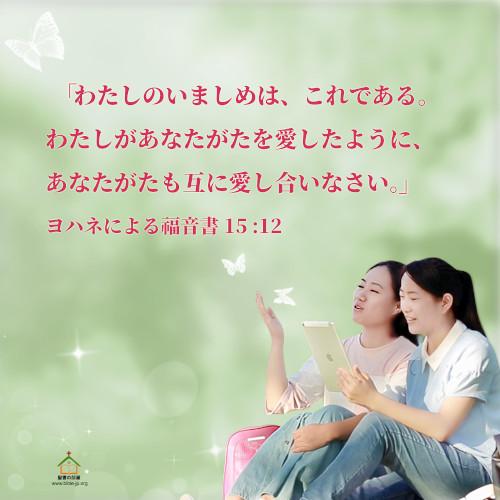聖句カード,ヨハネによる福音書,互いに愛し合いなさい,