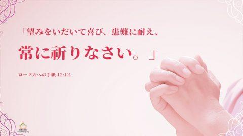 聖書の言葉-望みをいだいて喜び、患難に耐え、常に祈りなさい