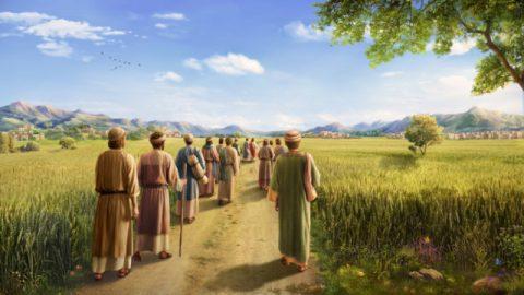 人の子は安息日の主である