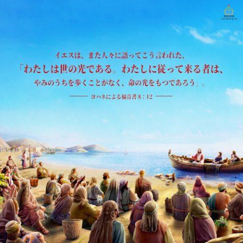 聖句カード,ヨハネによる福音書,わたしは世の光である