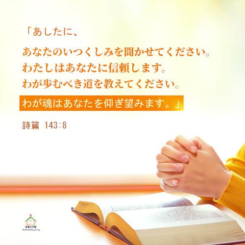 詩篇 143:8,わたしはあなたに信頼します,わたしはあなたに信頼します