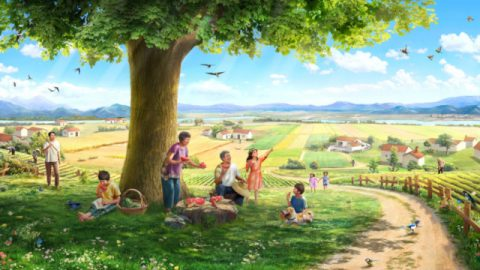 物語:種、土、木、日光、鳴き鳥、そして人間