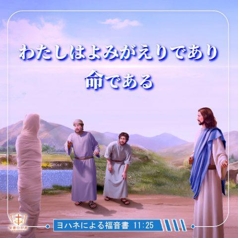 聖句カード,わたしはよみがえりであり、命である