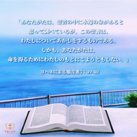 聖句カード,聖書には永遠のいのちはありません