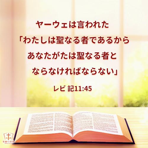 聖句カード|罪から解放されて清められることは神様の要求です