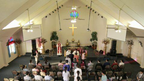 カトリック信者の証し,教会の荒廃の原因を尋ねる