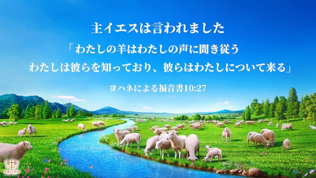 聖書の言葉ーわたしの羊は私の声に聞き従う・ヨハネによる福音書10章27節